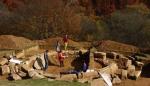 08. cercetare arheologica
